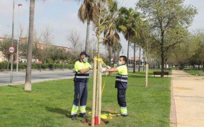 El Ayuntamiento de Huelva se suma al Archipiélago de Bosques con la plantación de 1.200 árboles